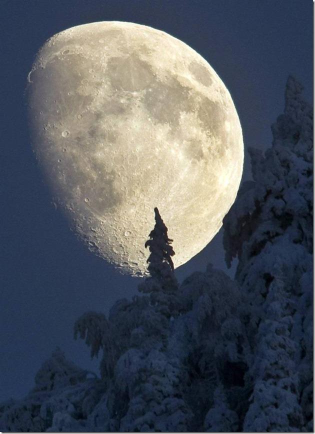 Under A Pagan Moon