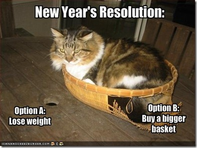 new-year-resolution-lose-weight-buy-bigger-basket-funny-cat